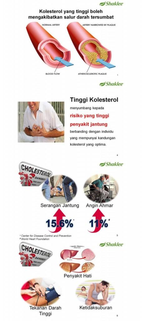 penyakit kolestrol