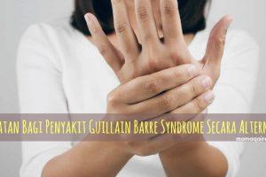 Penyakit Guillain Barre Syndrome