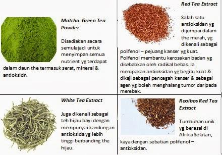 teh hijau kurangkan berat badan
